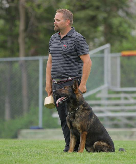 Vom Banach DDR German Shepherd at trial, standing next to his trainer.